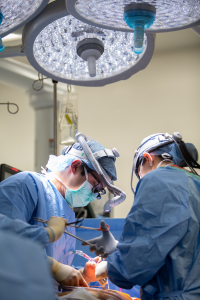 UF Health's lung transplant team, shown performing a procedure in a 2019 photo, has one of the highest national survival rates (96%) for one year post-transplant.