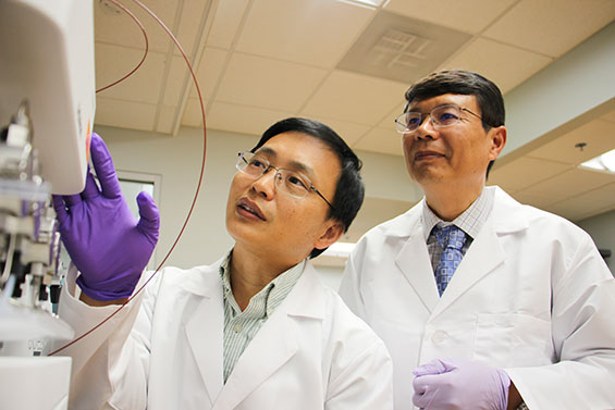 Guangrong Zheng, Ph.D., an associate professor of medicinal chemistry, and Daohong Zhou, Ph.D., a professor of pharmacodynamics and the Henry E. Innes Professor of Cancer Research, collaborate on anti-aging research. The pair received a $2.5 million NIH grant to study selective elimination of senescent cells in 2019.