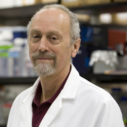 University of Florida Health ophthalmology researcher William Hauswirth, Ph.D.