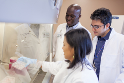 Preston A. Wells, Jr. Center for Brain Tumor Therapy at the University of Florida researchers Duane Mitchell, M.D., Ph.D., Catherine Flores, Ph.D., and Elias Sayour, M.D., Ph.D