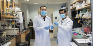 Long Nguyen, left, and Piyush Jain in Jain's lab at UF's Cancer and Genetics Research Center.
