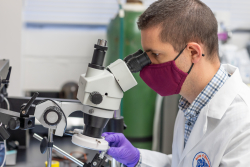 Guillaume de Lartigue, Ph.D., an assistant professor of pharmacodynamics in the UF College of Pharmacy, co-authored a study examining the hormone GLP-1 and its connections to the gut and brain.