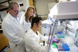 Chris Martyniuk, Ph.D., left, Jasenka Zubcevic, Ph.D., center, and Tao Yang, Ph.D., right, gather in Zubcevic's laboratory. They collaborated on a study that links brain communication to immune system response in the gut.