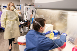 Researchers in the lab of Dr. Nicole Iovine found the drug baricitinib plus remdesivir led to better patient outcomes than remdesivir alone.