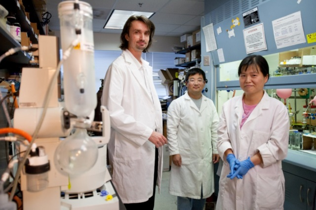 Left to right: Hendrik Luesch, Ph.D., director of the Center for Natural Products, Drug Discovery and Development, and Qi-Yin Chen, Ph.D., and Yanxia Liu, Ph.D.