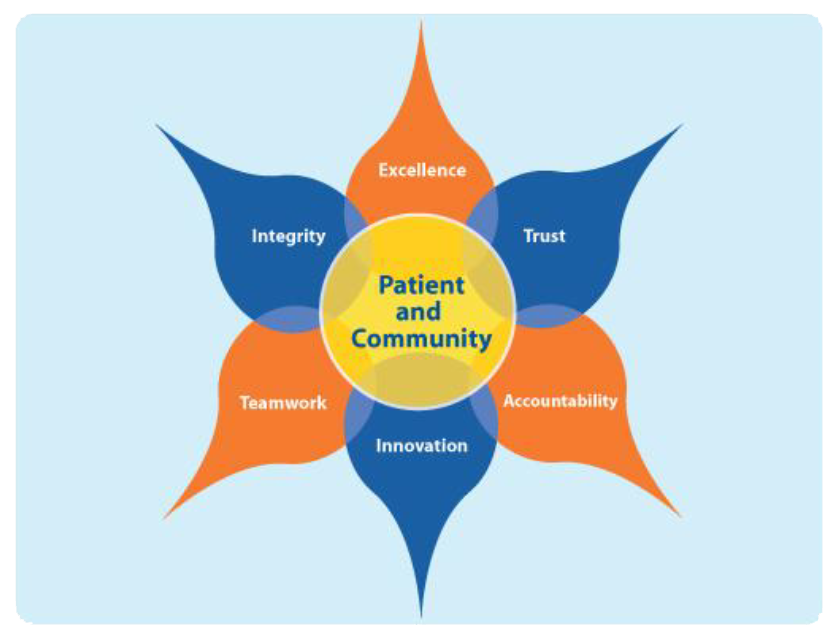 Core institutional values, visualized as a pinwheel