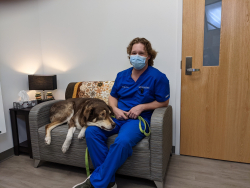 Jordan Harriz, a veterinary technician at UF's Small Animal Hospital, waits with his dog, Ruger, in an exam room on Jan. 21. Ruger recently underwent oral surgery to correct dental problems Harriz discovered while working in the hospital's Primary Care and Dentistry Service.