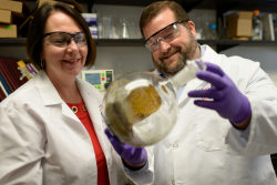 The late Bonnie Avery, Ph.D., a clinical professor of pharmaceutics, and Chris McCurdy, Ph.D., a professor of medicinal chemistry, examine a round bottom flask of kratom.