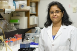 Tuhina Prasad, Ph.D., is a postdoctoral associate in the UF College of Medicine's department of ophthalmology research.