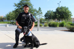 Officer Dale Holmes, of the University of Florida Police Department, with his K9, Boomer, in 2018. Boomer had just received a successful eye and heart screening during the UF College of Veterinary Medicine's annual service dog eye and heart screening event. (Photo by Sarah Carey)