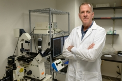 Robert Burne, Ph.D., an associate dean for research and chair of the UF College of Dentistry's department of oral biology, has identified a new bacteria in the mouth that may keep bad bacteria in check — and could lead to a way to prevent cavities by using probiotics.