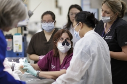 Dr. Fong Wong, right, a prosthodontic specialist and faculty member in UF's College of Dentistry, collaborated with Dr. Amy Stone, center, from the UF College of Veterinary Medicine, to affix a metal prosthesis to the inside of Darryl's mouth. (Photo by Mindy Cherisse Miller) (Right click for high res download)