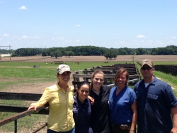 : Recent UF graduate Katie Sheppard, far left, with UF veterinary students Vicky Liberman and Stephanie Spencer and Dr. Audrey Kelleman at the Equine Sciences Center in Ocala. Sheppard completed her undergraduate degree in animal sciences and will enter UF's veterinary college's D.V.M. program this fall. (Photo by Ashley Parsley)