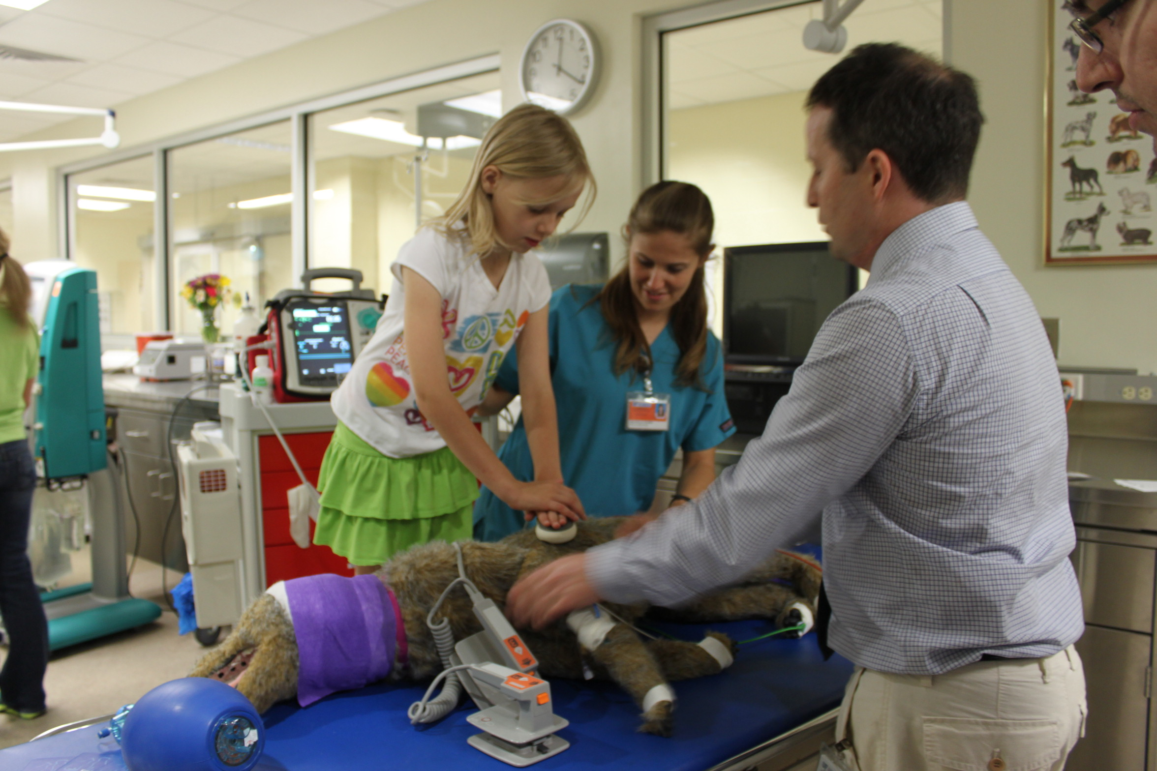 uf college of veterinary medicine to hold open house uf