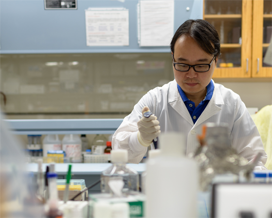 Rui Xiao, Ph.D, a geriatrics and pharmacology researcher in the UF College of Medicine, works in his laboratory.