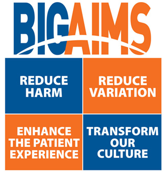 Big Aims Logo