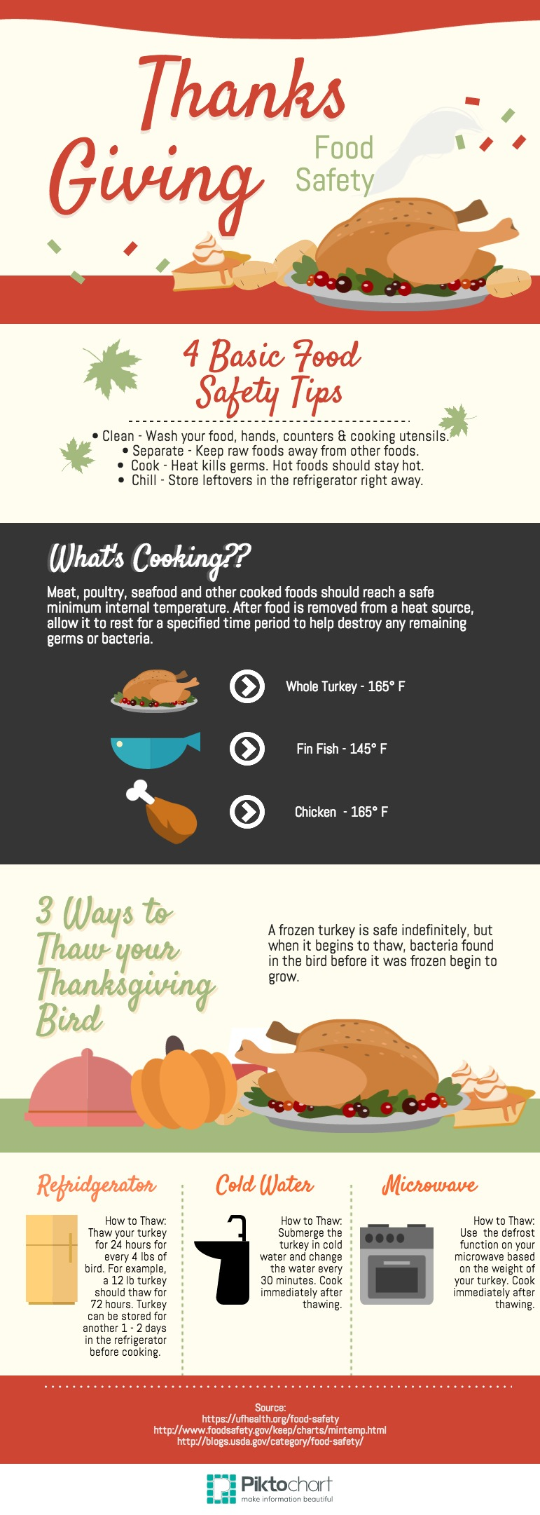 Thanksgiving Food Safety Tips infographic