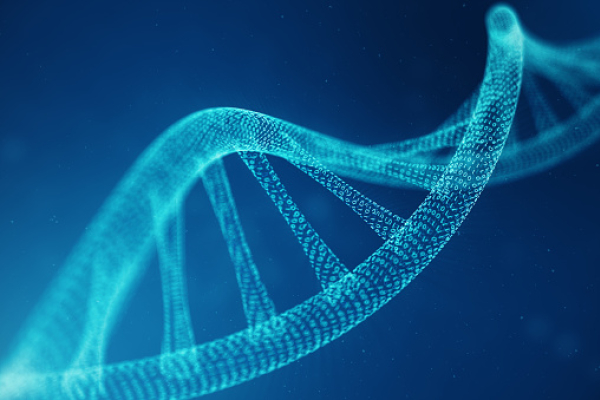An electronic representation of a strand of DNA.