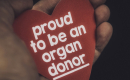 a hand holding a read heart with the words proud to be an organ donor on it
